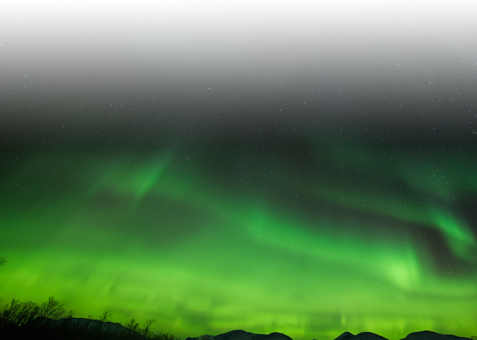 Visit Abisko - Airport Shuttle & Day Trips & Taxi Service